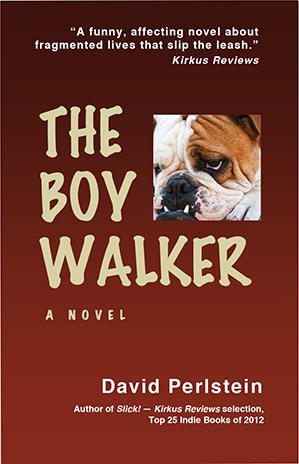 The Boy Walker cover image